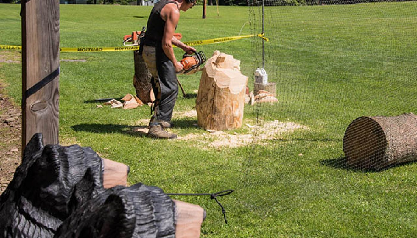 chainsaw art at stony fork campground
